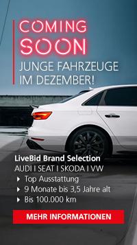 LB_Brand_Selection