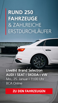 LiveBid Brand Selection